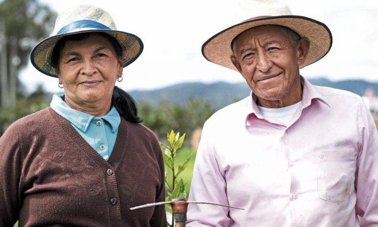 Familias campesinas de Antioquia, Cundinamarca y Boyacá pueden comercializar los productos agrícolas que cultivan, mediante la aplicación Fruvii.